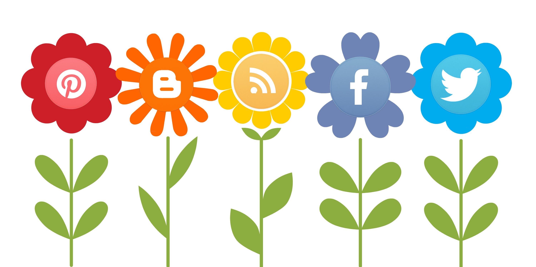 Estrategia y gestión de redes sociales